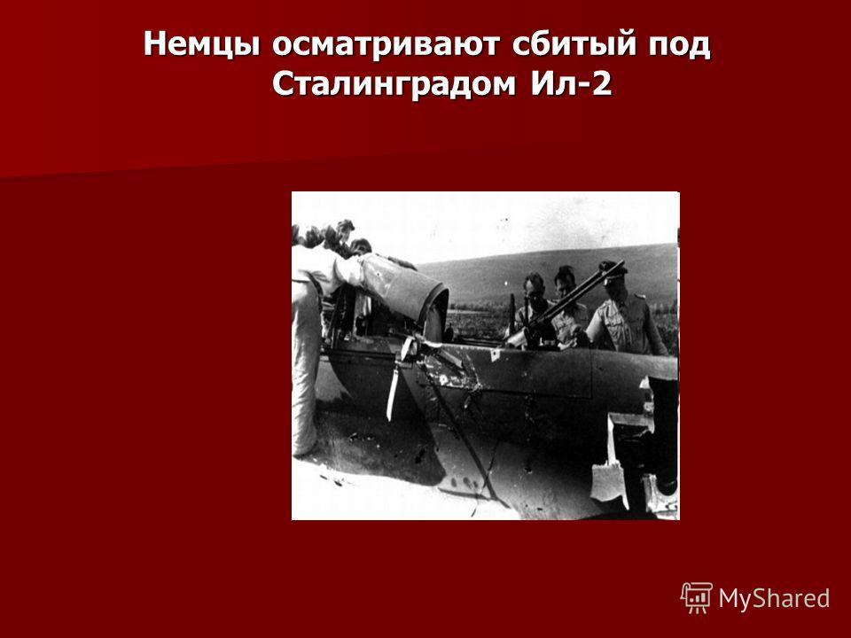 Немцы осматривают сбитый под Сталинградом Ил-2