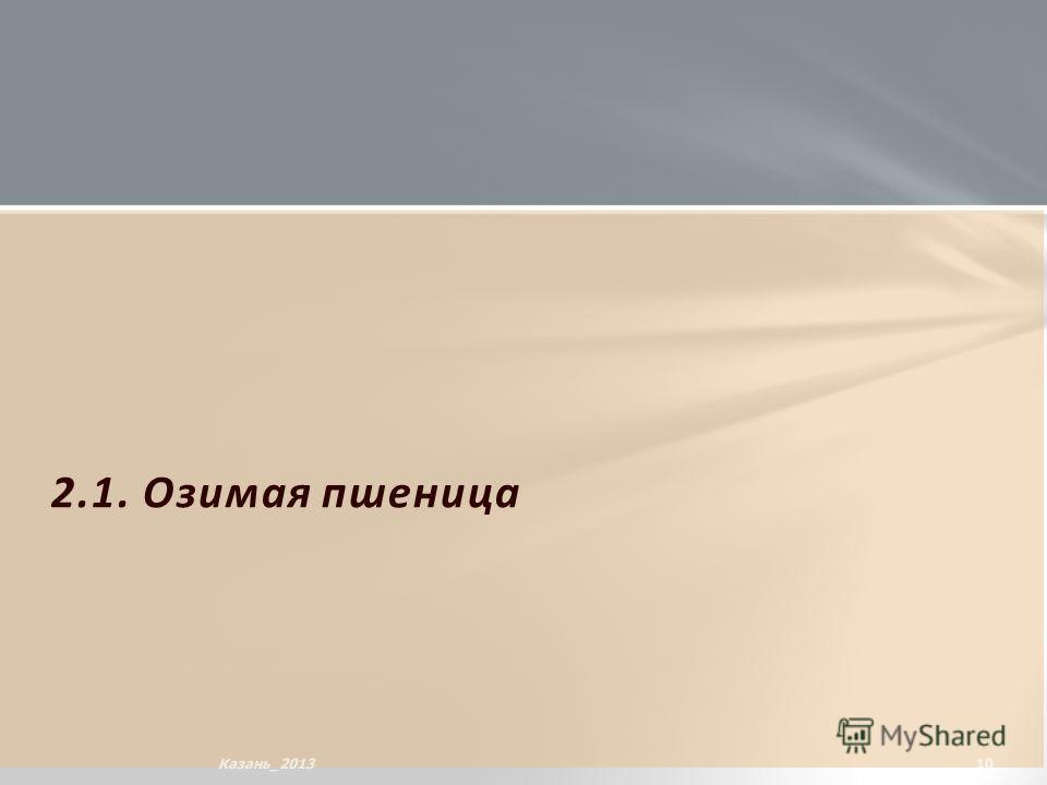 2.1. Озимая пшеница 10Казань_2013