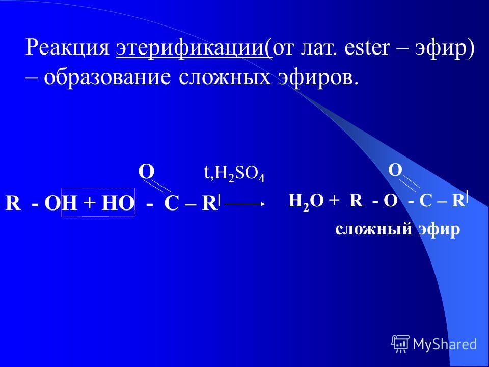 Реакция этерификации(от лат. ester – эфир) – образование сложных эфиров. O t,H 2 SO 4 R - OH + HO - C – R | О H 2 O + R - O - C – R | сложный эфир