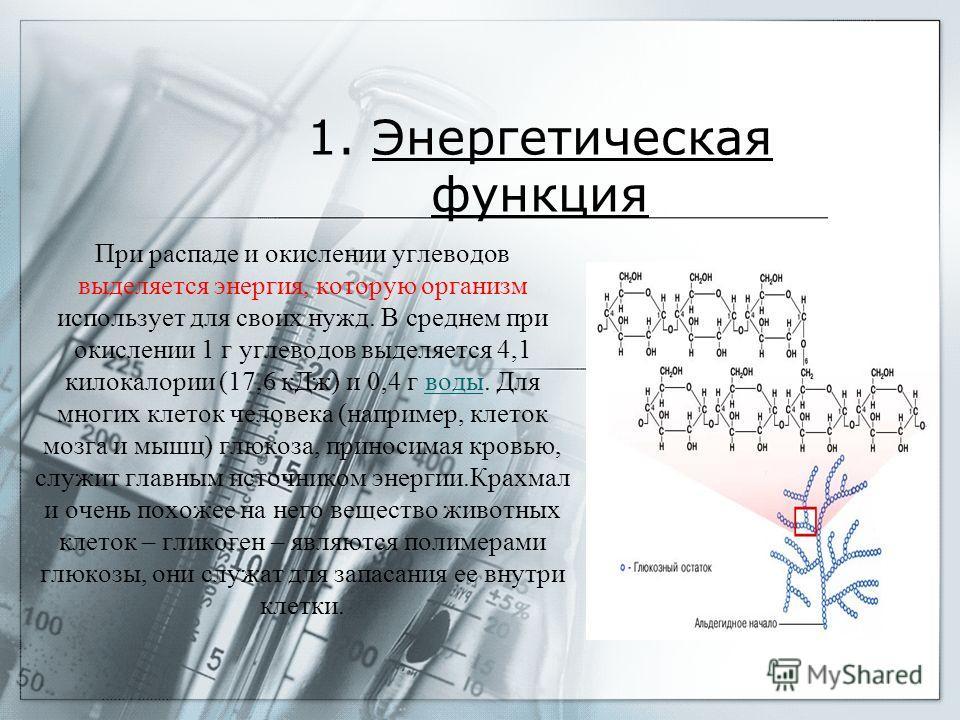 Функции углеводов: 1.Энергетическая 2.Защитная 3.Структурная 4.Пластическая