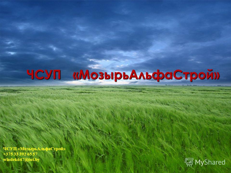 ЧСУП«МозырьАльфаСтрой» +375 33 392 65 57 wladek647@tut.by