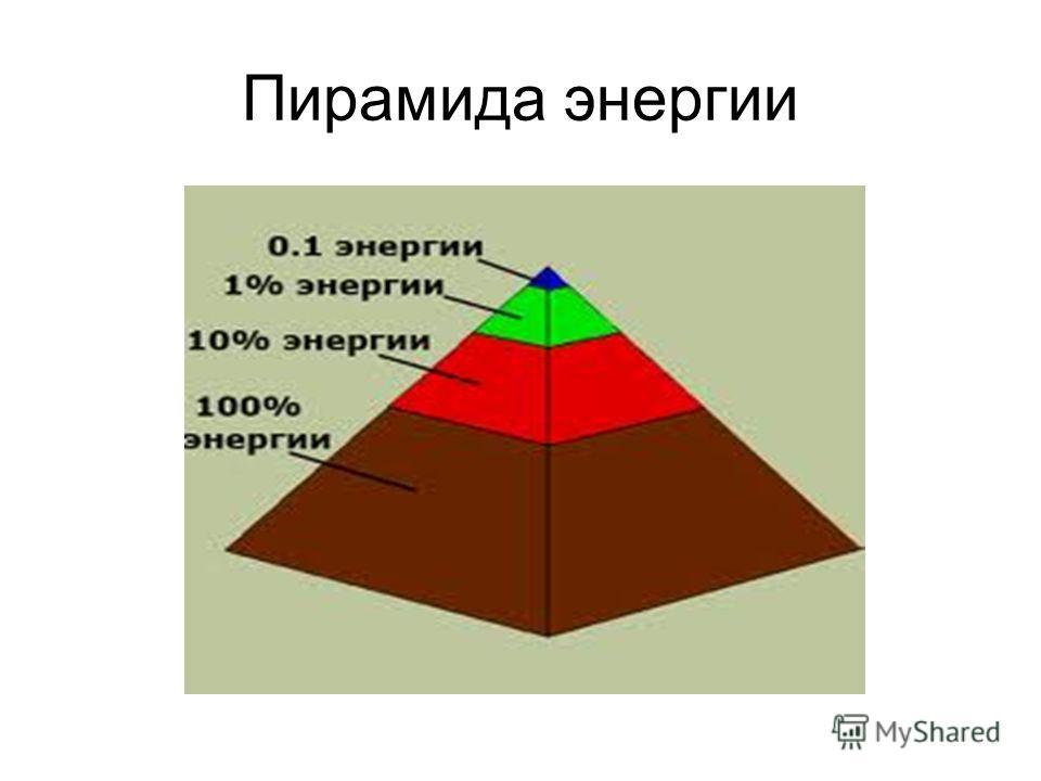 Пирамида энергии