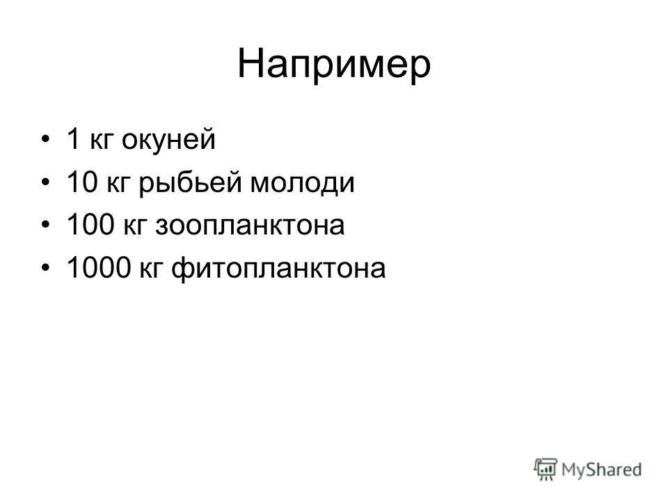 Например 1 кг окуней 10 кг рыбьей молоди 100 кг зоопланктона 1000 кг фитопланктона