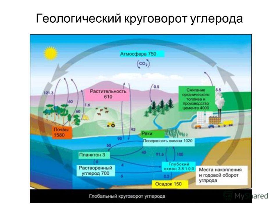 Геологический круговорот углерода