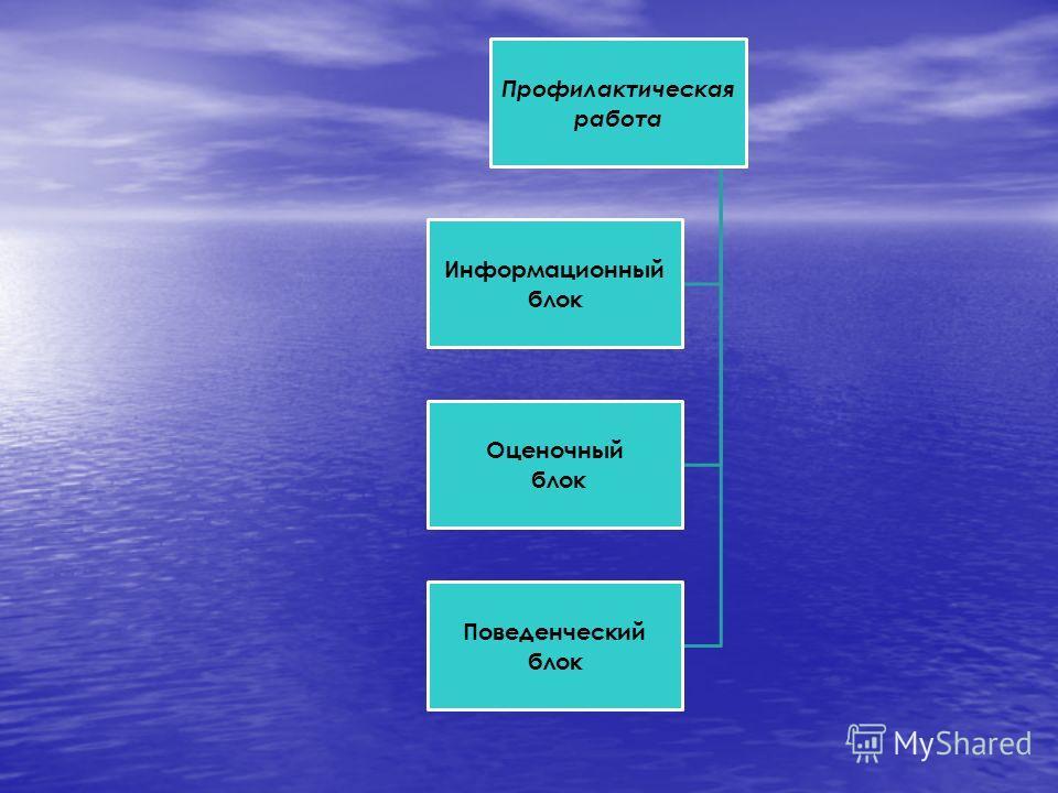 Профилактическая работа Информационный блок Оценочный блок Поведенческий блок