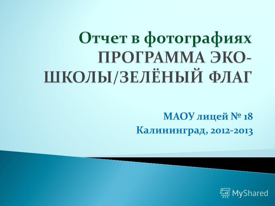 МАОУ лицей 18 Калининград, 2012-2013