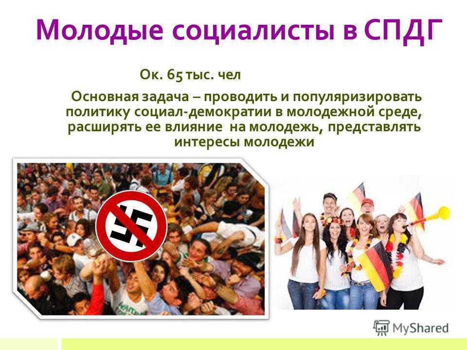 Молодые социалисты в СПДГ Ок. 65 тыс. чел Основная задача – проводить и популяризировать политику социал-демократии в молодежной среде, расширять ее влияние на молодежь, представлять интересы молодежи