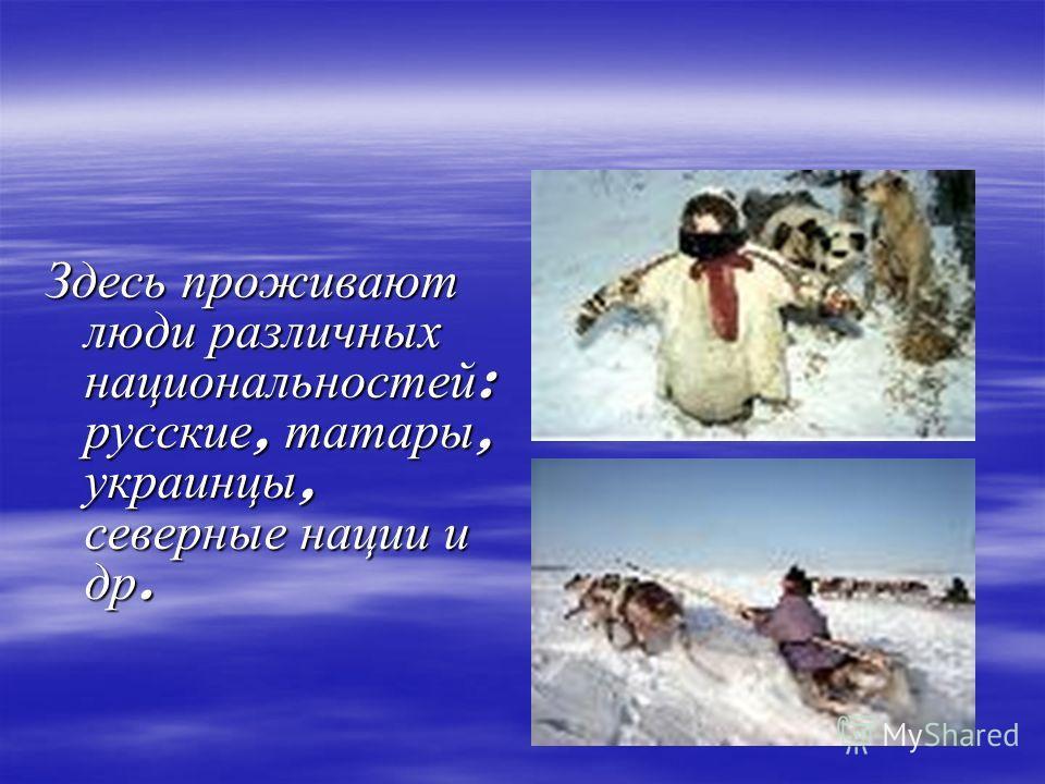 Здесь проживают люди различных национальностей : русские, татары, украинцы, северные нации и др.