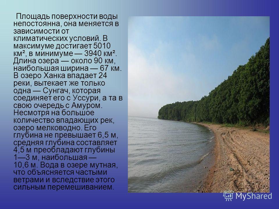 Площадь поверхности воды непостоянна, она меняется в зависимости от климатических условий. В максимуме достигает 5010 км², в минимуме 3940 км². Длина озера около 90 км, наибольшая ширина 67 км. В озеро Ханка впадает 24 реки, вытекает же только одна С