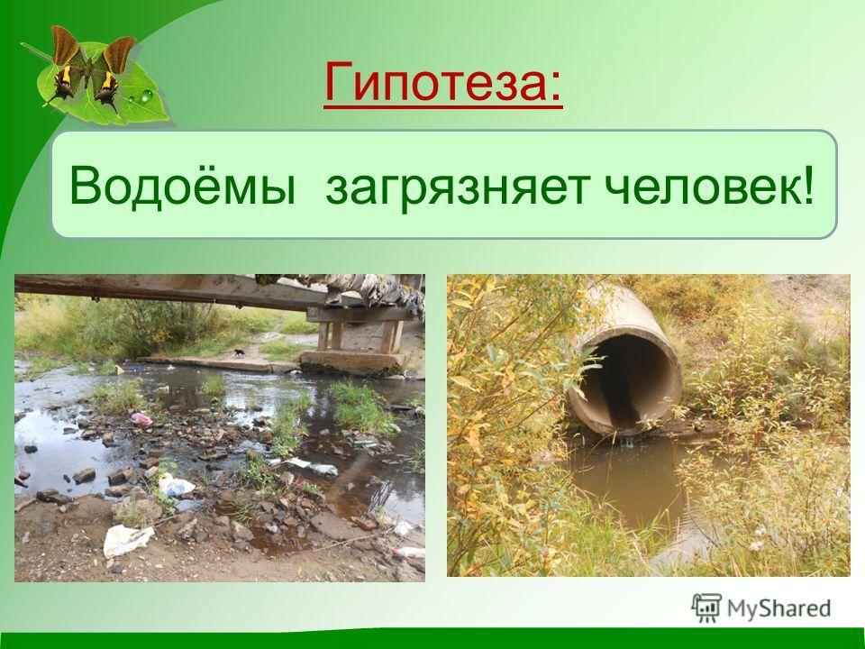 Гипотеза: Водоёмы загрязняет человек!