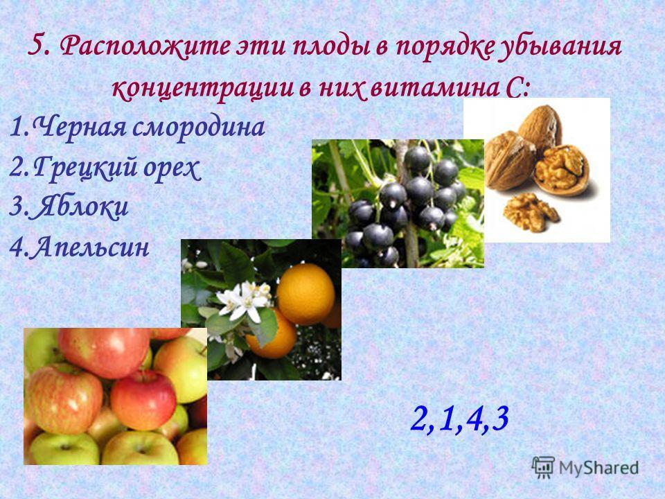 5. Расположите эти плоды в порядке убывания концентрации в них витамина С: 1.Черная смородина 2.Грецкий орех 3. Яблоки 4.Апельсин 2,1,4,3