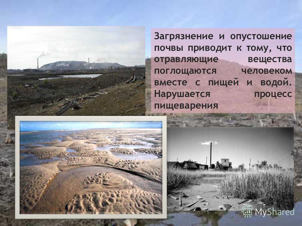 Загрязнение и опустошение почвы приводит к тому, что отравляющие вещества поглощаются человеком вместе с пищей и водой. Нарушается процесс пищеварения