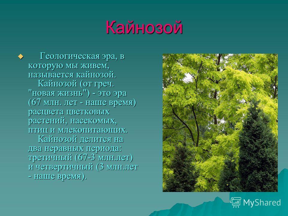 Кайнозой Геологическая эра, в которую мы живем, называется кайнозой. Кайнозой (от греч.