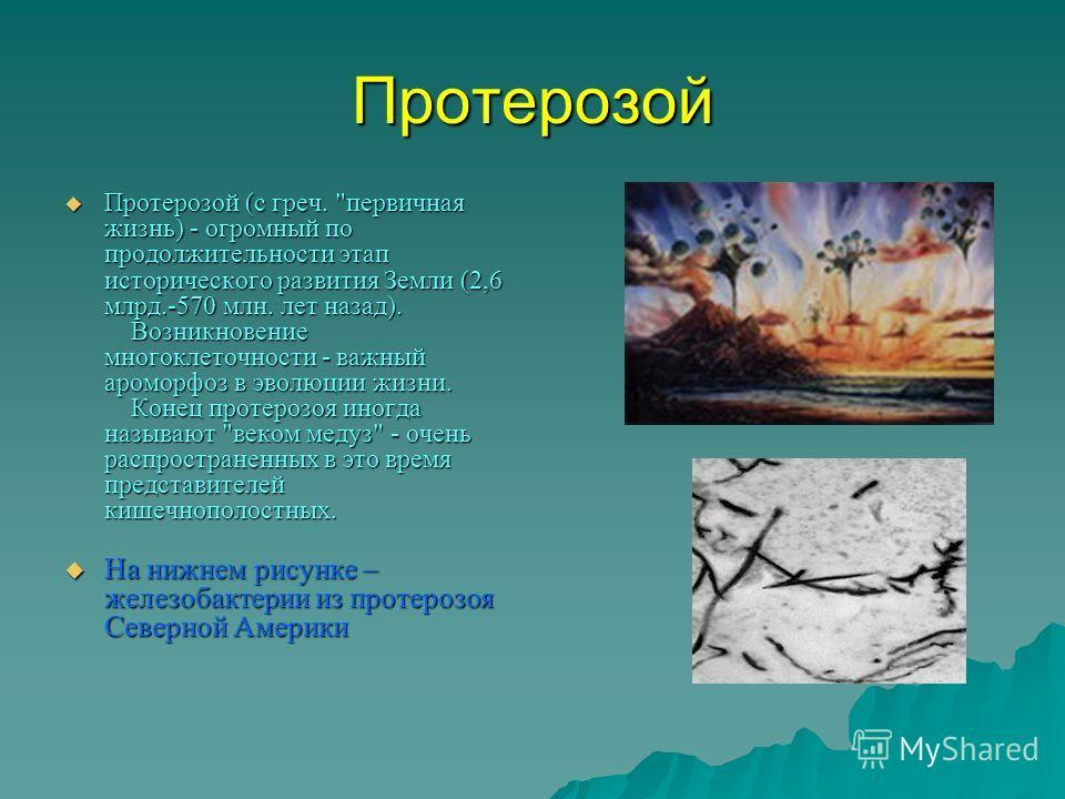 Протерозой Протерозой (с греч.