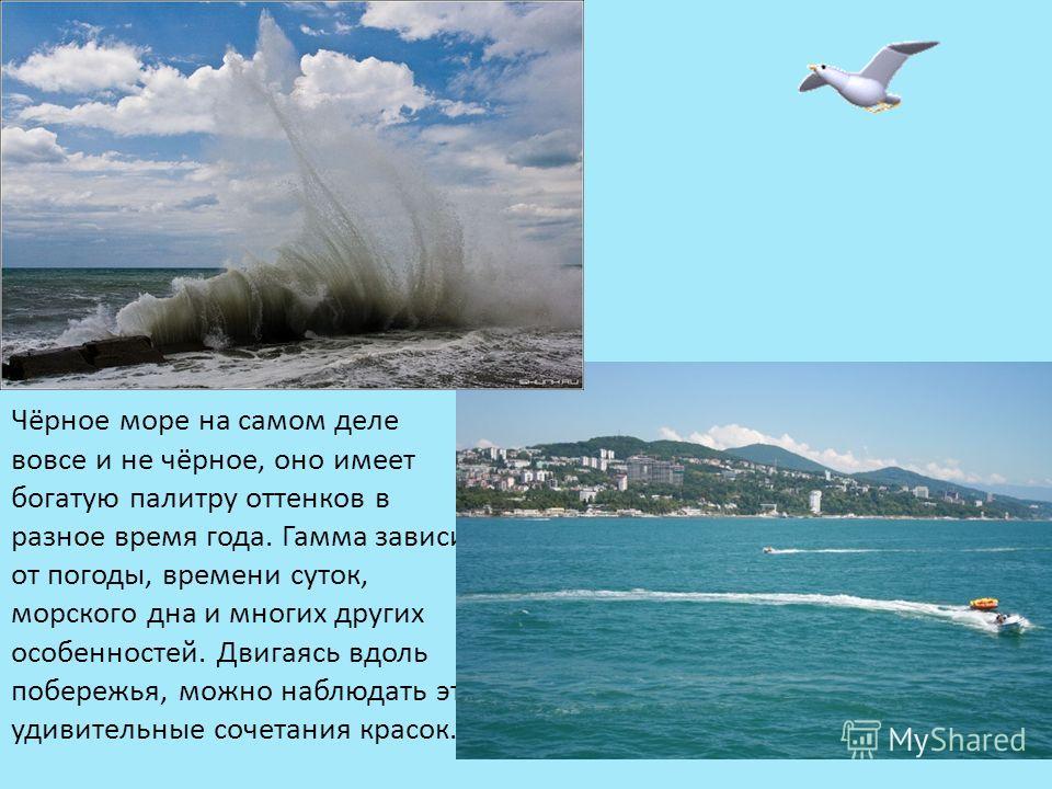 Чёрное море на самом деле вовсе и не чёрное, оно имеет богатую палитру оттенков в разное время года. Гамма зависит от погоды, времени суток, морского дна и многих других особенностей. Двигаясь вдоль побережья, можно наблюдать эти удивительные сочетан