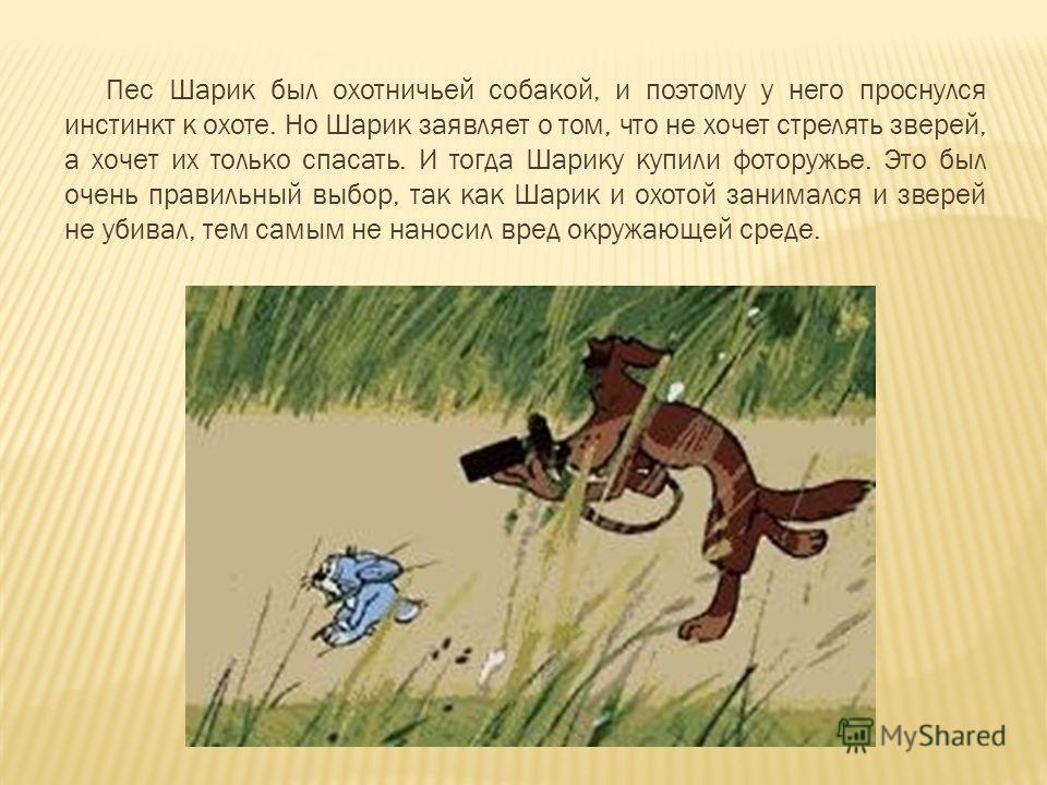 Пес Шарик был охотничьей собакой, и поэтому у него проснулся инстинкт к охоте. Но Шарик заявляет о том, что не хочет стрелять зверей, а хочет их только спасать. И тогда Шарику купили фоторужье. Это был очень правильный выбор, так как Шарик и охотой з