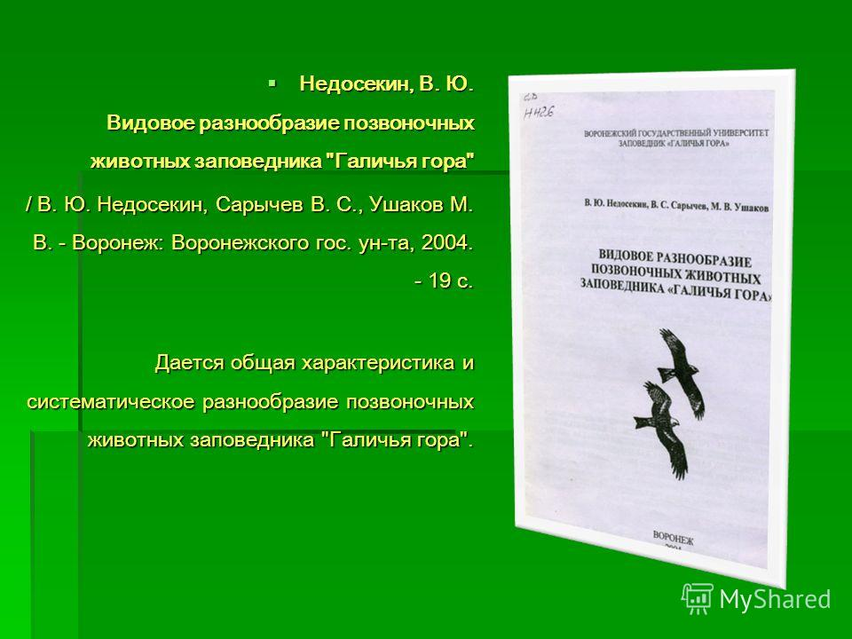 Недосекин, В. Ю. Видовое разнообразие позвоночных животных заповедника