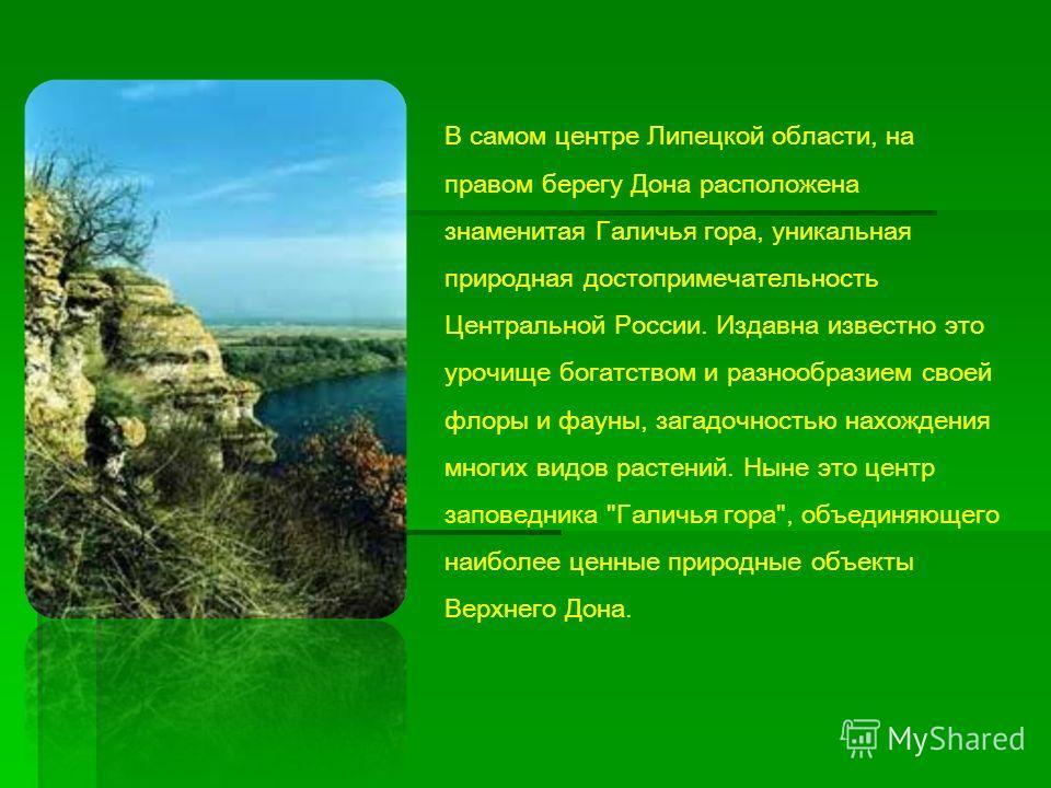 В самом центре Липецкой области, на правом берегу Дона расположена знаменитая Галичья гора, уникальная природная достопримечательность Центральной России. Издавна известно это урочище богатством и разнообразием своей флоры и фауны, загадочностью нахо