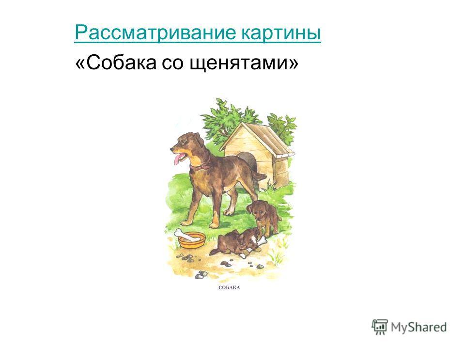 Рассматривание картины «Собака со щенятами»