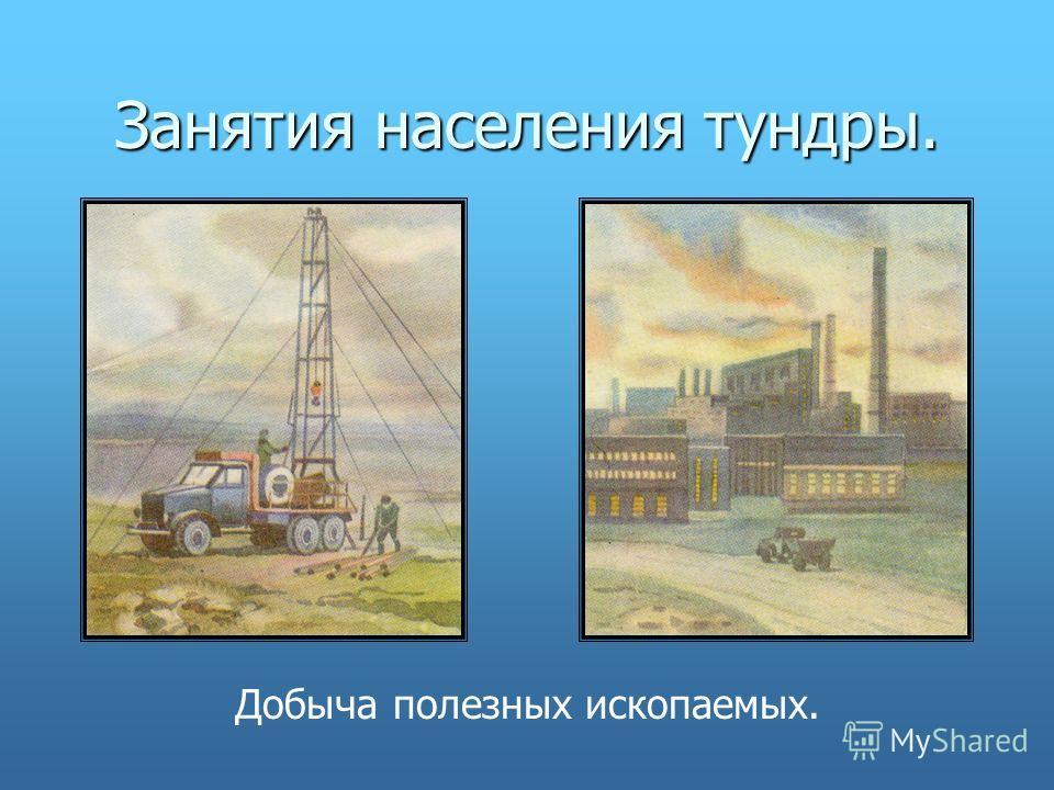 Занятия населения тундры. Добыча полезных ископаемых.