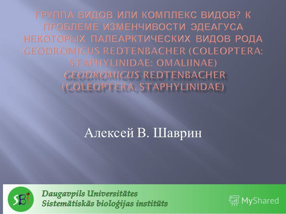 Алексей В. Шаврин