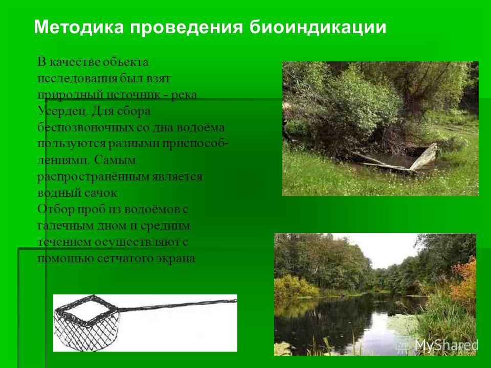 В качестве объекта исследования был взят природный источник - река Усердец. Для сбора беспозвоночных со дна водоёма пользуются разными приспособ  лениями. Самым распространённым является водный сачок Отбор проб из водоёмов с галечным дном и средним