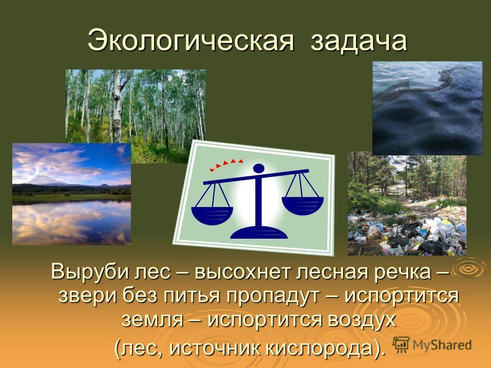Экологическая задача Выруби лес – высохнет лесная речка – звери без питья пропадут – испортится земля – испортится воздух (лес, источник кислорода).