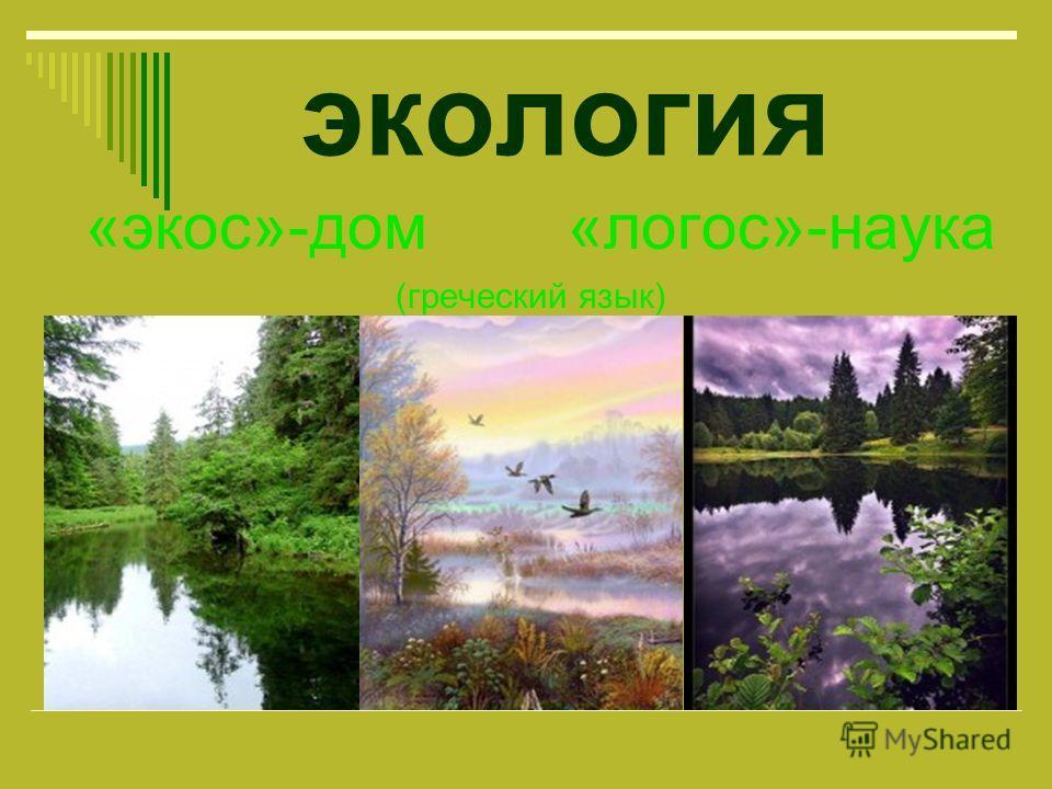 экология «экос»-дом «логос»-наука (греческий язык)