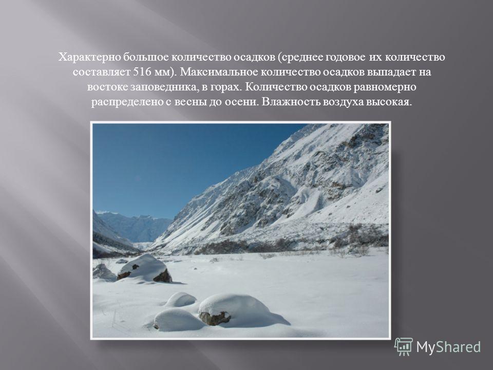 Характерно большое количество осадков ( среднее годовое их количество составляет 516 мм ). Максимальное количество осадков выпадает на востоке заповедника, в горах. Количество осадков равномерно распределено с весны до осени. Влажность воздуха высока
