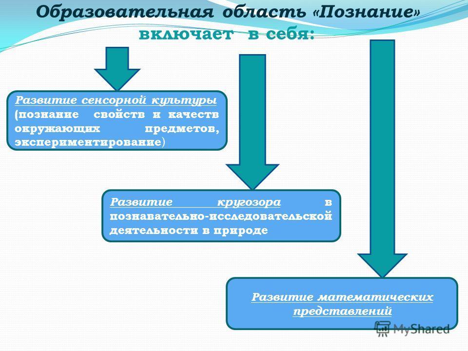 Образовательная область «Познание» включает в себя: Развитие сенсорной культуры (познание свойств и качеств окружающих предметов, экспериментирование ) Развитие кругозора в познавательно-исследовательской деятельности в природе Развитие математически