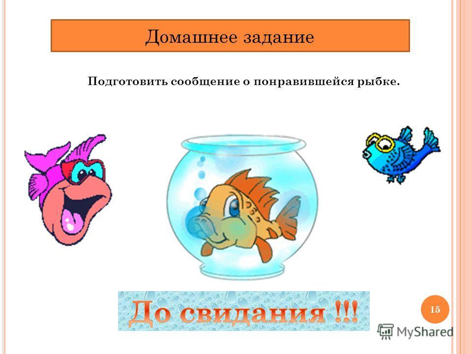 Домашнее задание Подготовить сообщение о понравившейся рыбке. 15