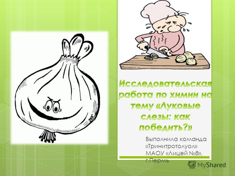 Выполнила команда «Тринитротолуол» МАОУ «Лицей 8», г.Пермь