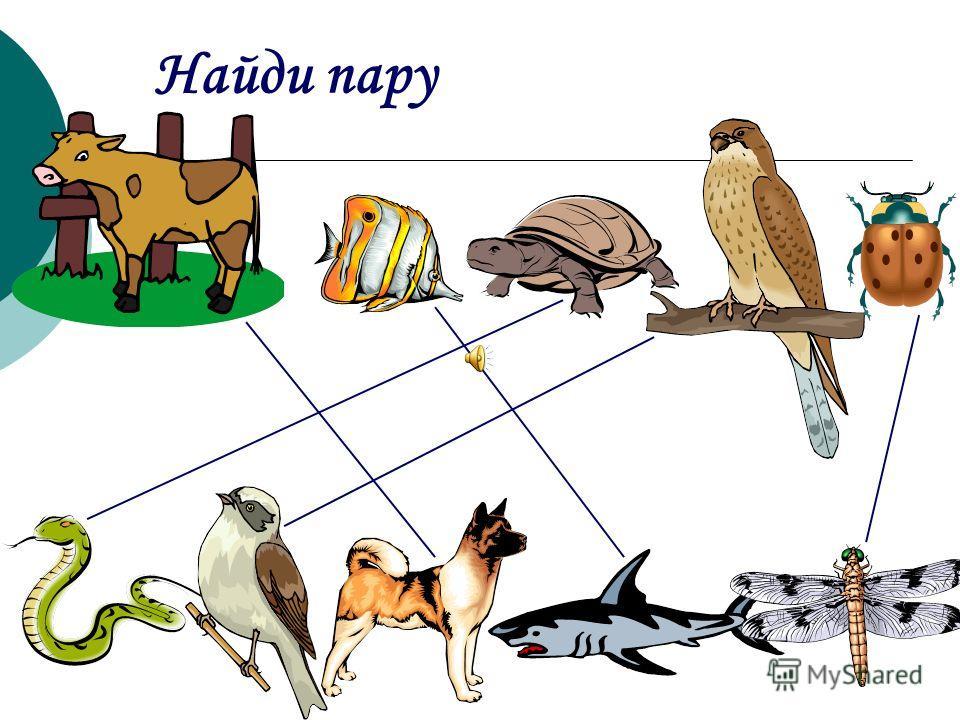 Цель. Выявление способности ребенка действовать в соответствии с инструкцией; закрепление понятия «величина предметов» (большой маленький, больше меньше). Назови геометрические фигуры, нарисованные в квадратах слева. «Перенеси» их в квадраты справ