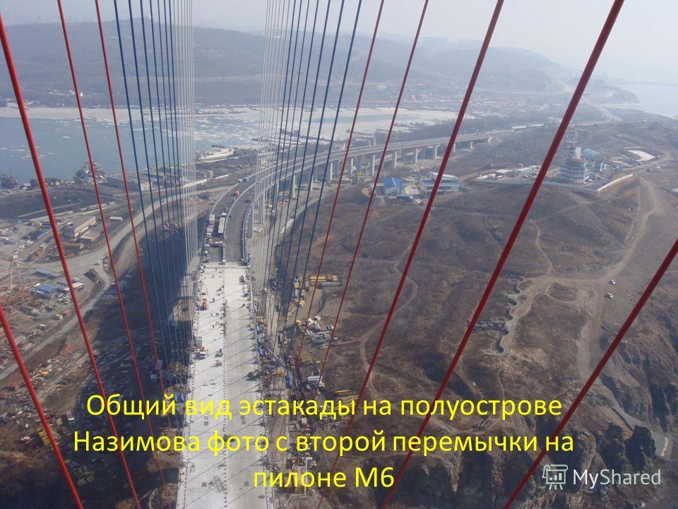 Общий вид эстакады на полуострове Назимова фото с второй перемычки на пилоне М6