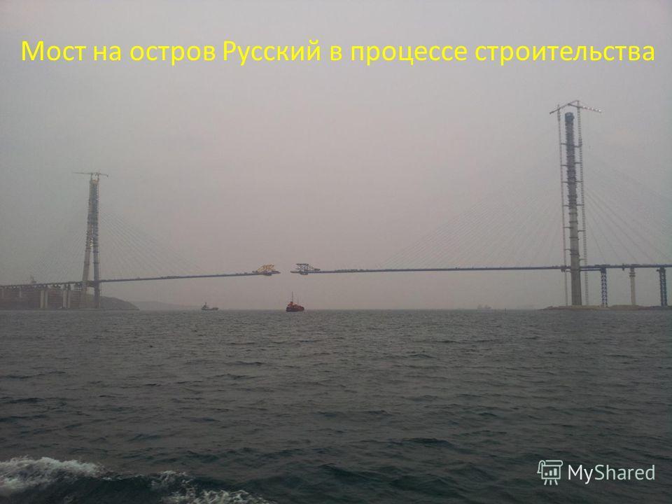 Мост на остров Русский в процессе строительства