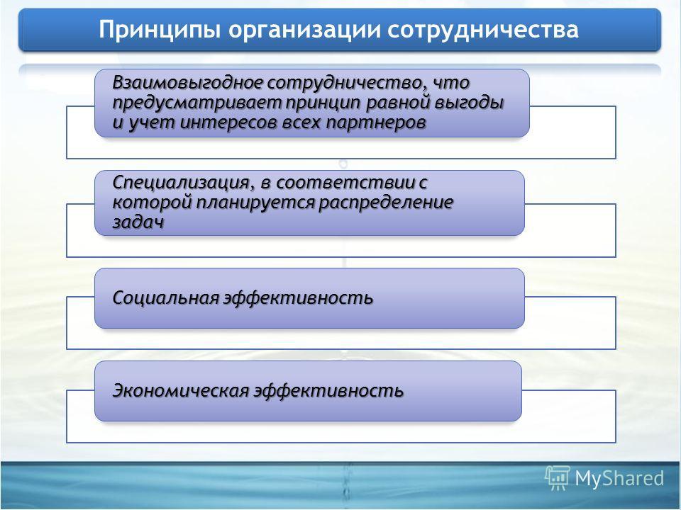 Взаимовыгодное сотрудничество, что предусматривает принцип равной выгоды и учет интересов всех партнеров Специализация, в соответствии с которой планируется распределение задач Социальная эффективность Экономическая эффективность