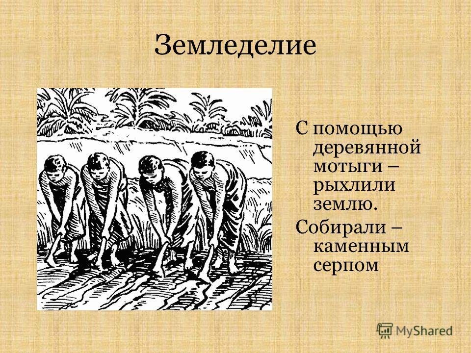 Земледелие С помощью деревянной мотыги – рыхлили землю. Собирали – каменным серпом