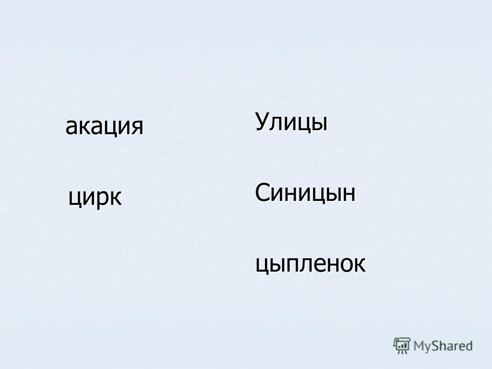 акация акация цирк цирк УлицыСиницынцыпленок