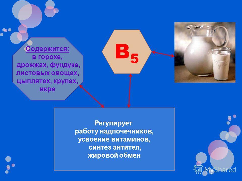 B5B5 Регулирует работу надпочечников, усвоение витаминов, синтез антител, жировой обмен Содержится: в горохе, дрожжах, фундуке, листовых овощах, цыплятах, крупах, икре
