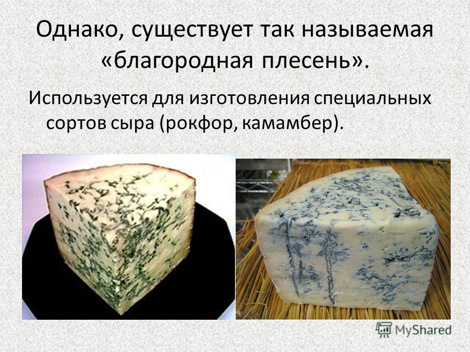 Однако, существует так называемая «благородная плесень». Используется для изготовления специальных сортов сыра (рокфор, камамбер).