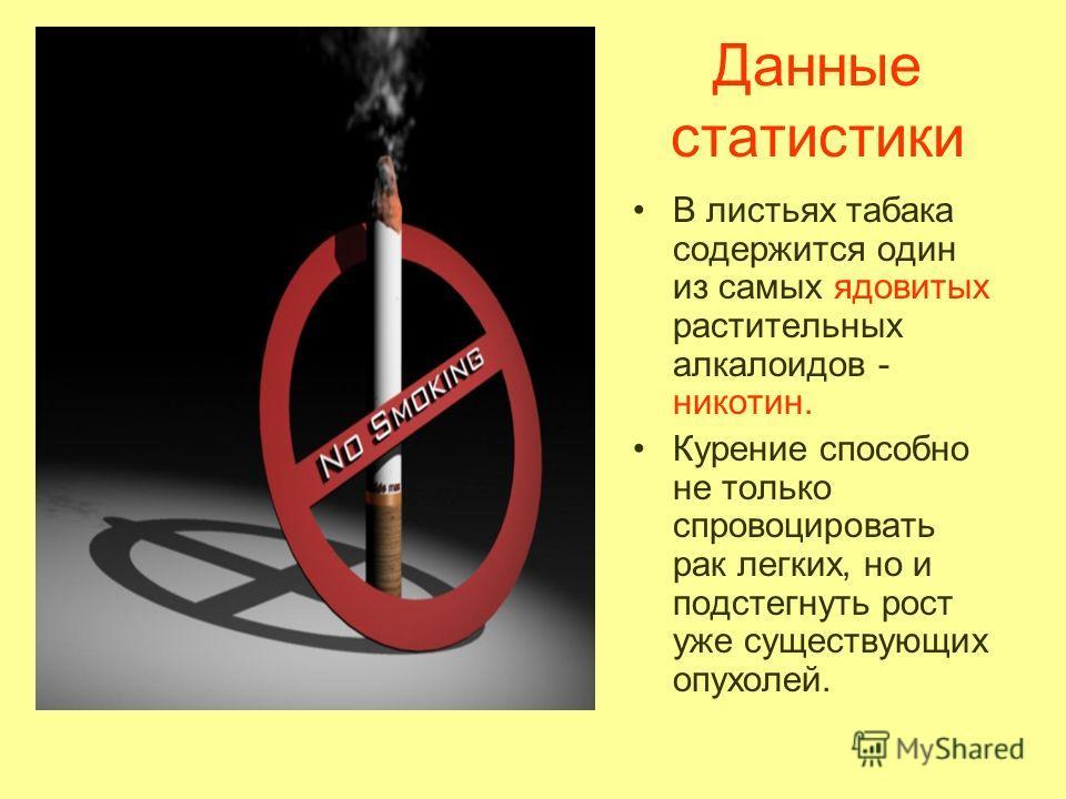 Данные статистики В листьях табака содержится один из самых ядовитых растительных алкалоидов - никотин. Курение способно не только спровоцировать рак легких, но и подстегнуть рост уже существующих опухолей.