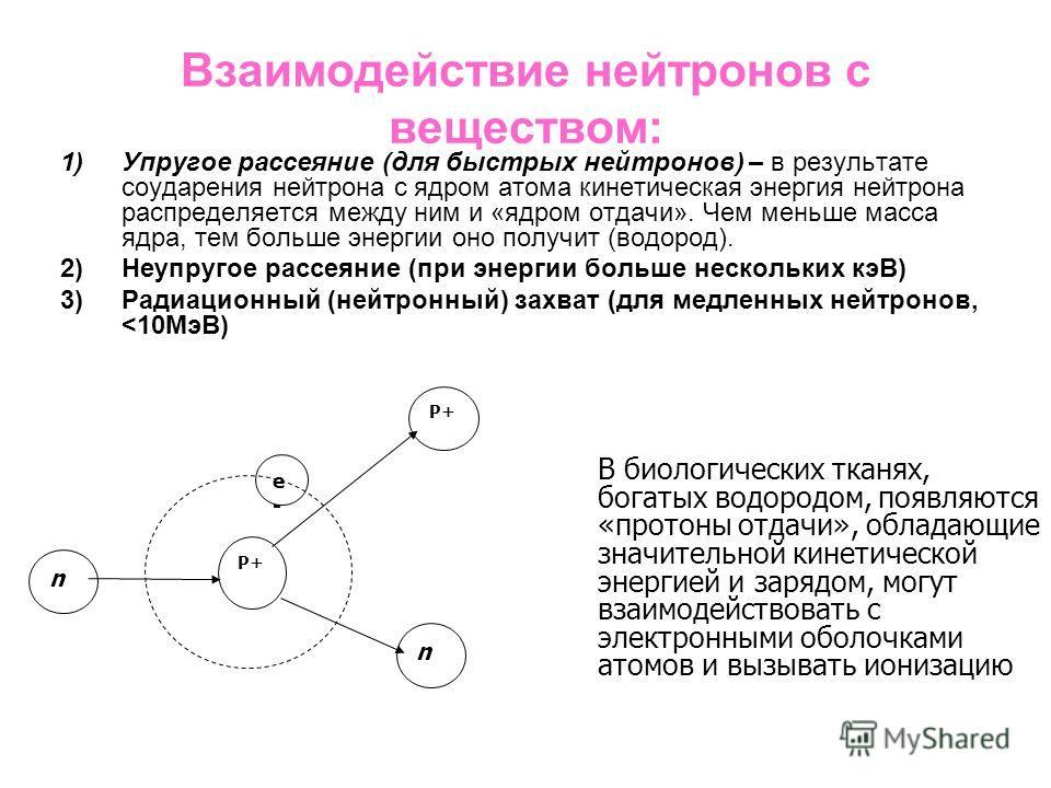Взаимодействие нейтронов с веществом: 1)Упругое рассеяние (для быстрых нейтронов) – в результате соударения нейтрона с ядром атома кинетическая энергия нейтрона распределяется между ним и «ядром отдачи». Чем меньше масса ядра, тем больше энергии оно
