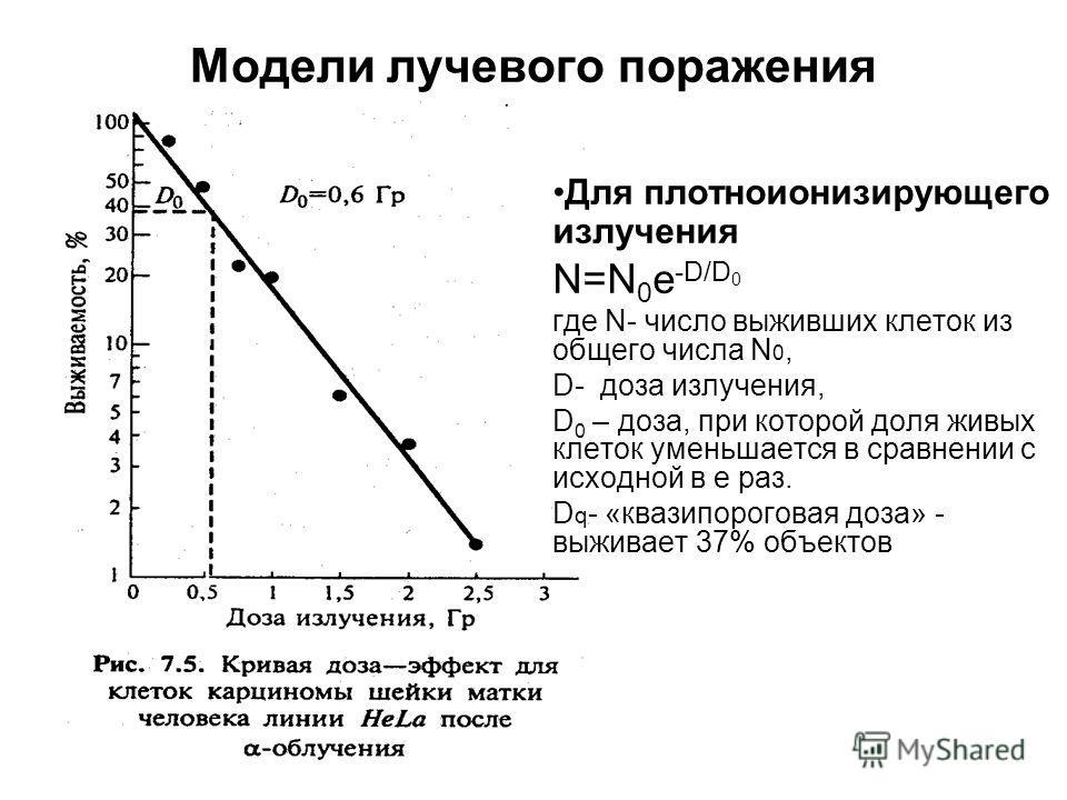 Модели лучевого поражения Для плотноионизирующего излучения N=N 0 e -D/D 0 где N- число выживших клеток из общего числа N 0, D- доза излучения, D 0 – доза, при которой доля живых клеток уменьшается в сравнении с исходной в е раз. D q - «квазипорогова