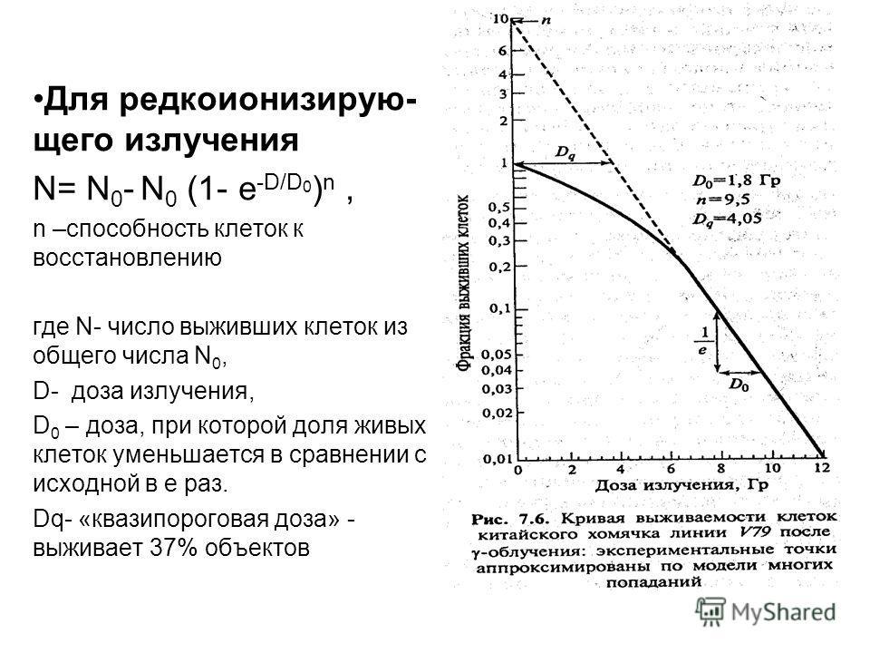 Для редкоионизирую- щего излучения N= N 0 - N 0 (1- e -D/D 0 ) n, n –способность клеток к восстановлению где N- число выживших клеток из общего числа N 0, D- доза излучения, D 0 – доза, при которой доля живых клеток уменьшается в сравнении с исходной
