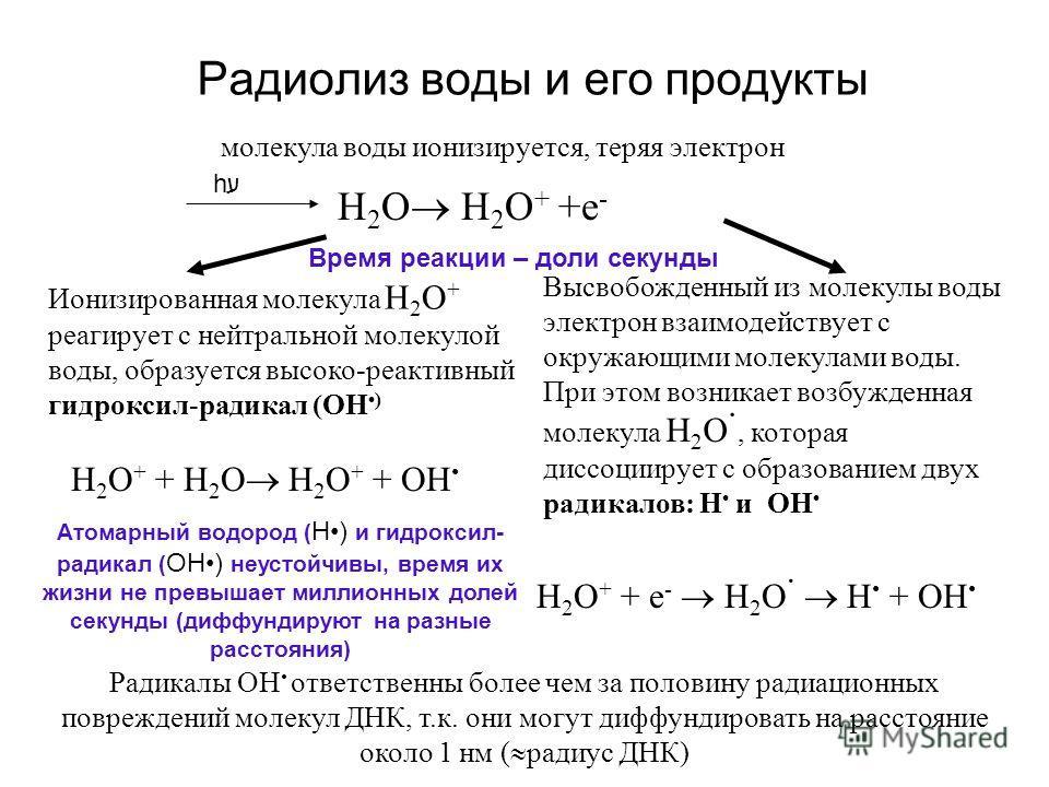 Радиолиз воды и его продукты Н 2 О H 2 O + +e - молекула воды ионизируется, теряя электрон H 2 O + + Н 2 О H 2 O + + ОН Ионизированная молекула H 2 O + реагирует с нейтральной молекулой воды, образуется высоко-реактивный гидроксил-радикал (ОН ) Высво