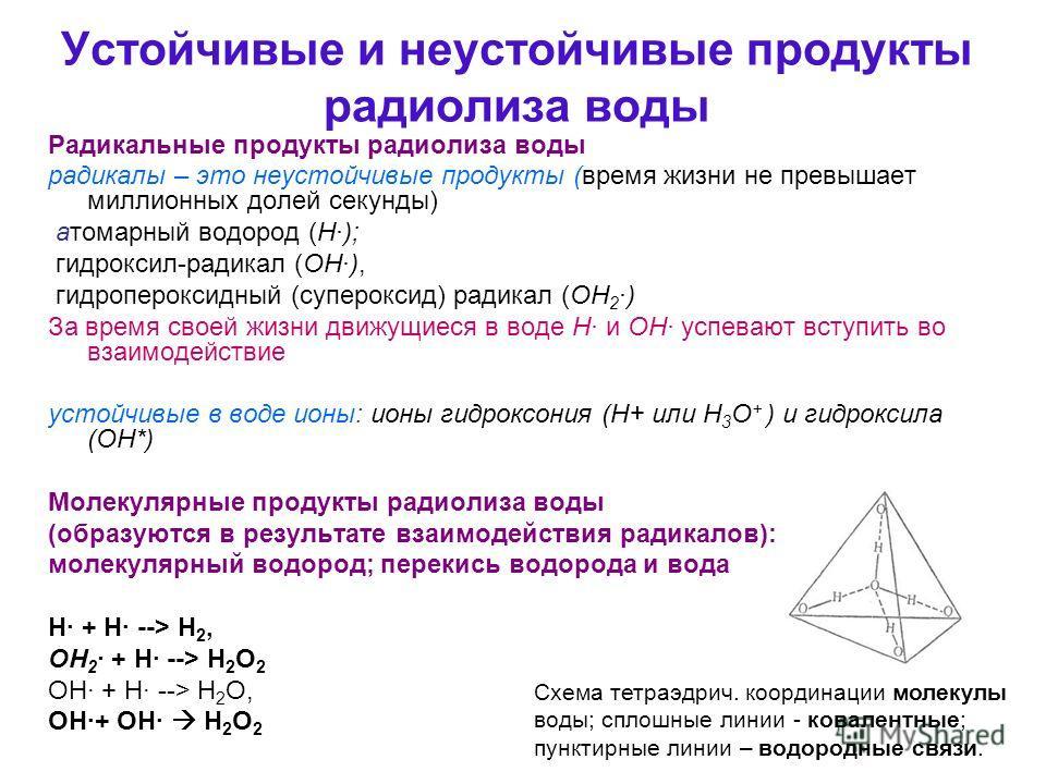 Устойчивые и неустойчивые продукты радиолиза воды Радикальные продукты радиолиза воды радикалы – это неустойчивые продукты (время жизни не превышает миллионных долей секунды) атомарный водород (Н·); гидроксил-радикал (ОН·), гидропероксидный (суперокс