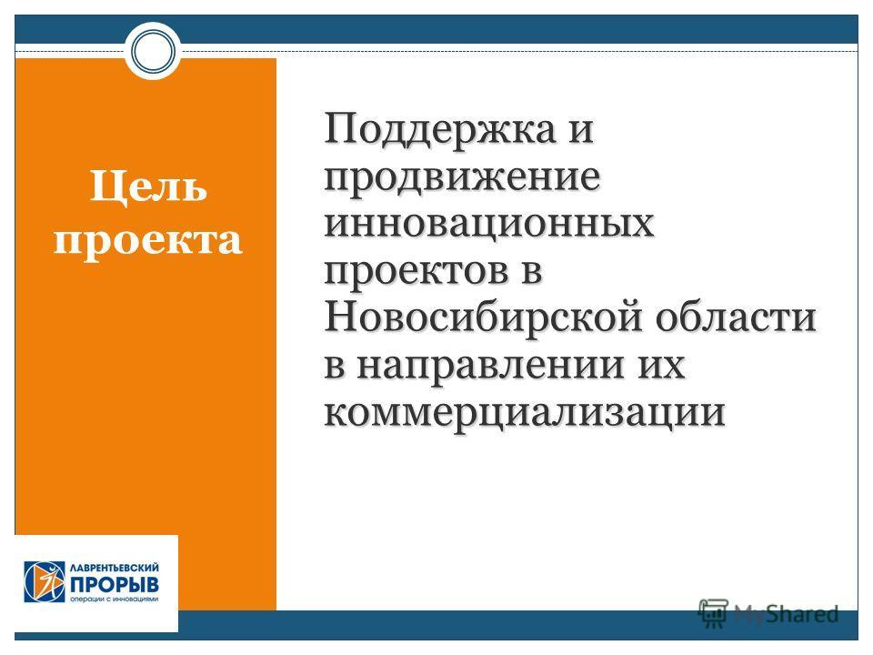 Поддержка и продвижение инновационных проектов в Новосибирской области в направлении их коммерциализации Цель проекта
