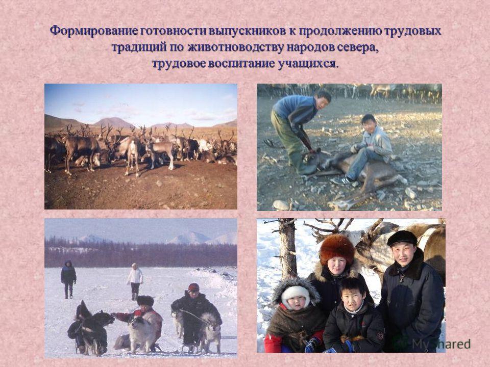 Формирование готовности выпускников к продолжению трудовых традиций по животноводству народов севера, трудовое воспитание учащихся.