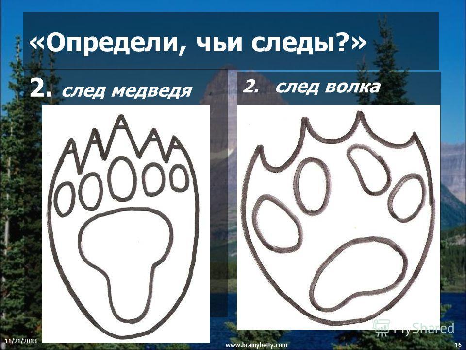 11/21/2013 www.brainybetty.com15 IV конкурс «Определи, чьи следы?» 1. след глухаря след лисы