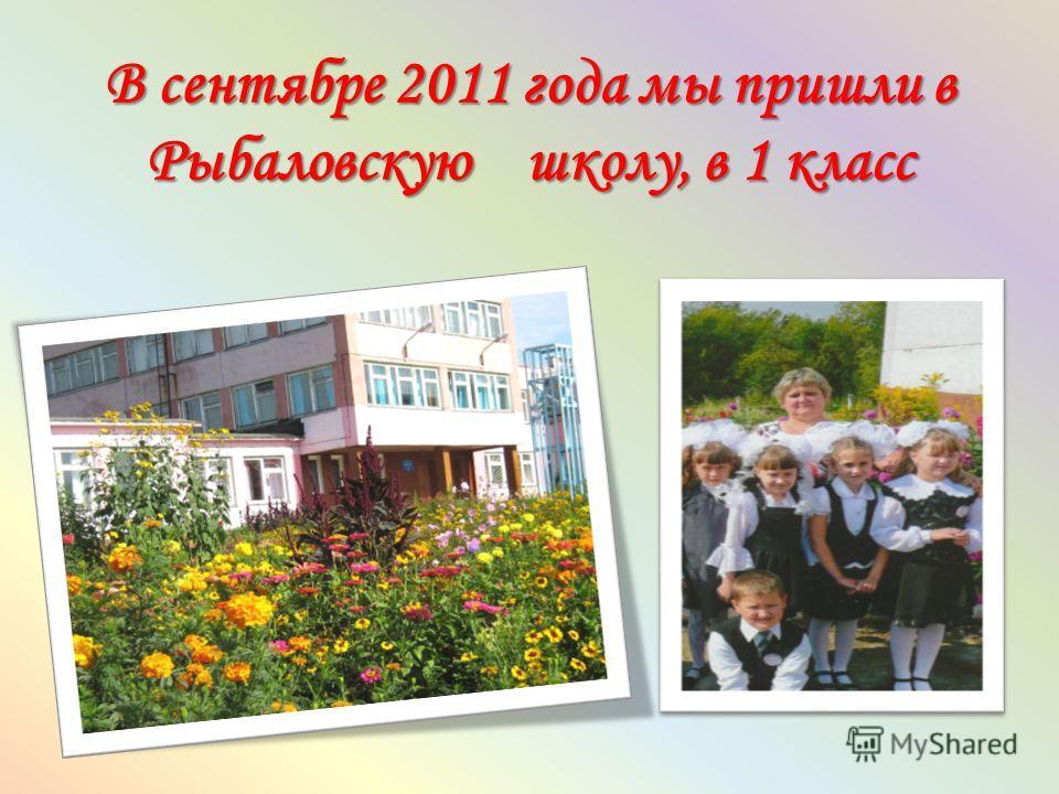 В сентябре 2011 года мы пришли в Рыбаловскую школу, в 1 класс